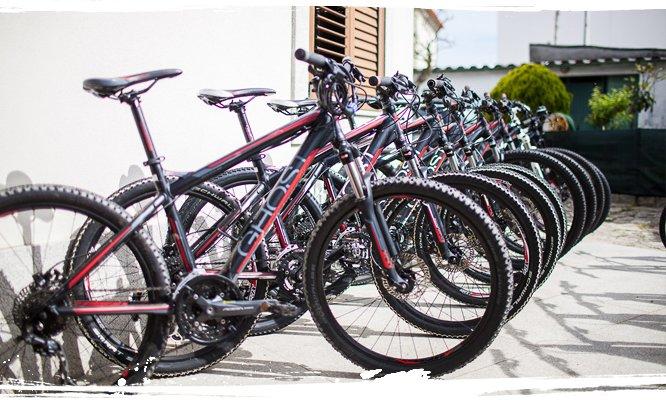 AllYouCanSurf bei uns kannst du neue und gebrauchte Fahrräder leihen bzw. mieten